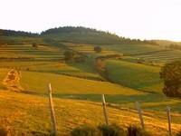 le-soleil-en-fin-de-journee-sur-nos-collines